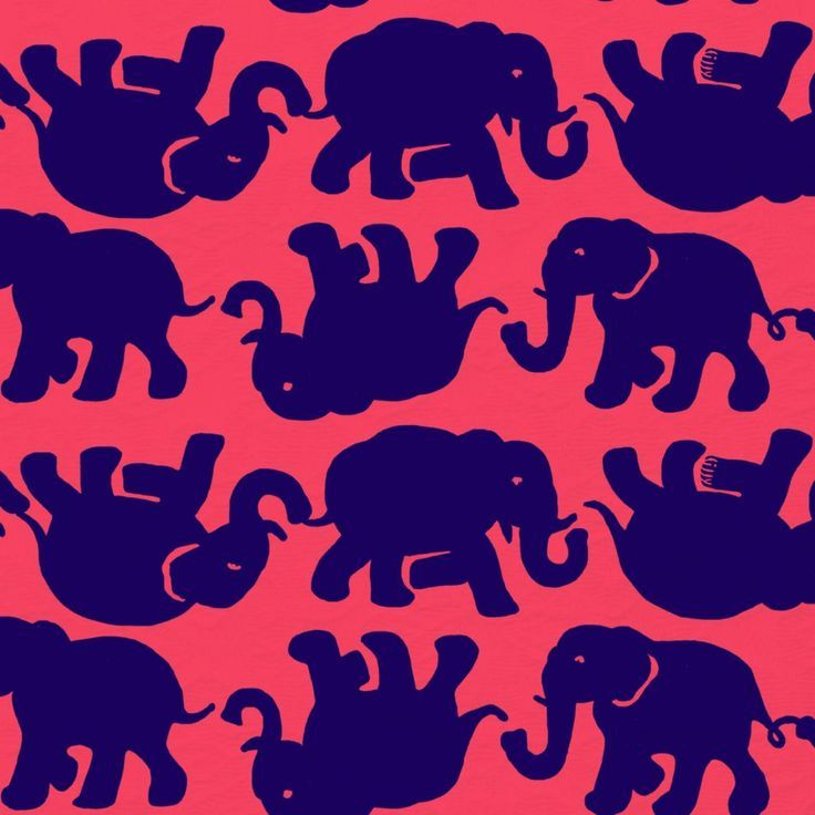 Minimalistic Lilly Pulitzer print featuring navy elephants along a coral background